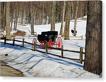 Canvas Print featuring the photograph Horse And Buggy - No Work Today by Janice Adomeit