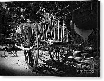 Horse Cart Canvas Print by Thanh Tran