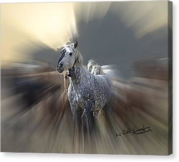 Horse Of A Different Color Zoomed Canvas Print