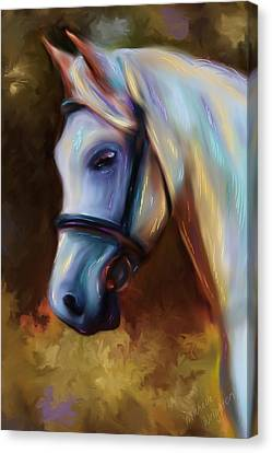 Horse Of Colour Canvas Print by Michelle Wrighton
