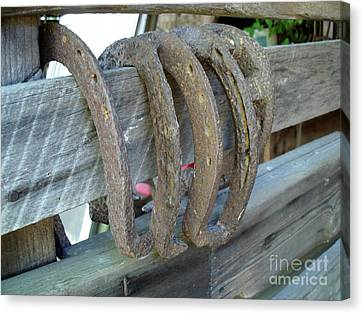 Horse Shoes Canvas Print by Kerri Mortenson