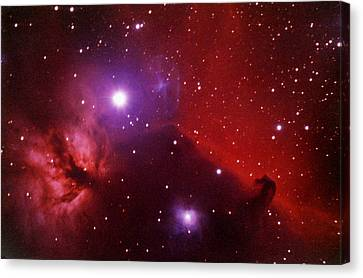 Horsehead Nebula In The Belt Of Orion Canvas Print by A. V. Ley