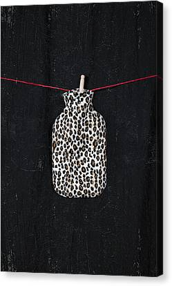 Hot-water Bottle Canvas Print by Joana Kruse