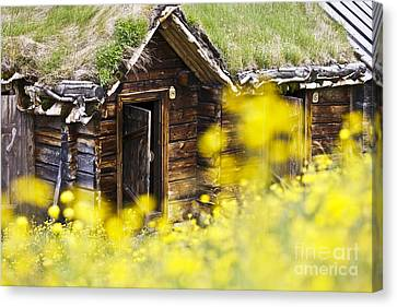 House Behind Yellow Flowers Canvas Print by Heiko Koehrer-Wagner