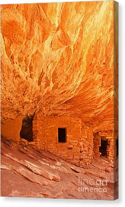 House On Fire Ruin Portrait 2 Canvas Print by Bob and Nancy Kendrick