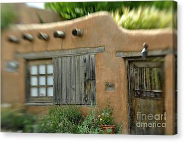 House With A View Canvas Print by Tamera James