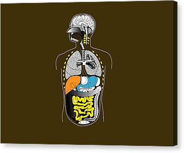 Human Internal Organs, Artwork Canvas Print by Francis Leroy, Biocosmos