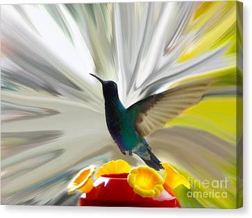 Hummingbird Series Vii Canvas Print by Al Bourassa