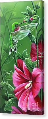 Hummingbird Canvas Print by Sharon Molinaro