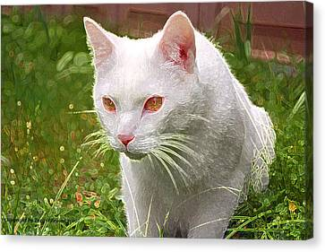 Canvas Print featuring the photograph Hunting Cat by Tyra  OBryant