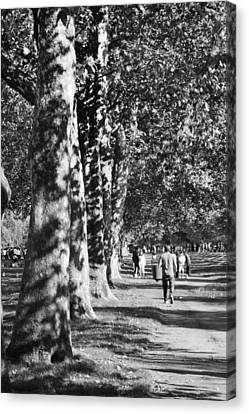 Canvas Print featuring the photograph Hyde Park Trees by Maj Seda
