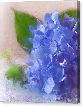 Canvas Print featuring the photograph Hydrangea by Anna Rumiantseva