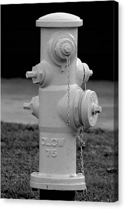 Canvas Print featuring the photograph Hydrant by Elizabeth  Doran