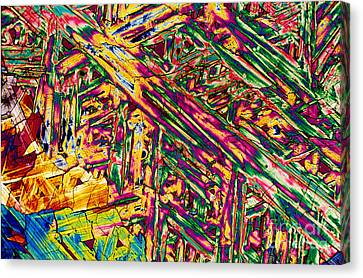 Hydrocortisone Canvas Print