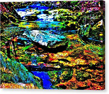 Hyper Childs Brook Z 52 Canvas Print by George Ramos