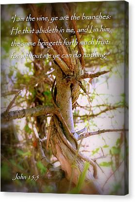 Inspirational Canvas Print - I Am The Vine John 15 by Cindy Wright