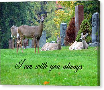 I Am With You Always Canvas Print by Bruce Ritchie