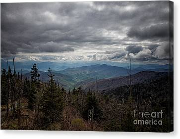 I Can See For Miles Canvas Print by Ronald Lutz