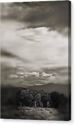 I Dreamed That Love Would Never Die Canvas Print by Laurie Search