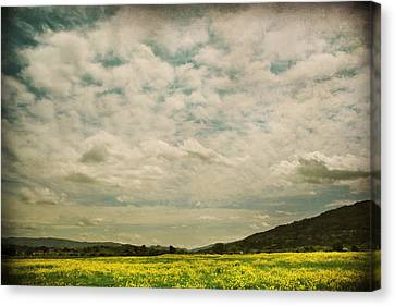 I Just Sat There Watching The Clouds Canvas Print by Laurie Search