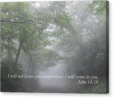 Canvas Print featuring the photograph I Will Not Leave You Comfortless by Diannah Lynch