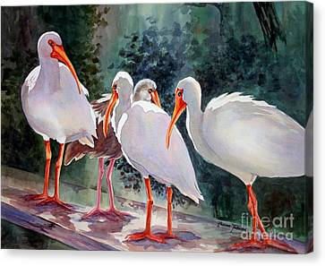 Canvas Print featuring the painting Ibis - Youngster Among Us. by Roxanne Tobaison