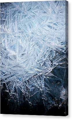 Ice Crystal Patterns Canvas Print by Skye Hohmann