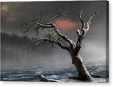 Ice Floes Canvas Print by Igor Zenin