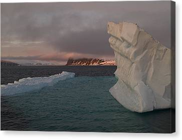 Ice Formations Float In Blue Water Canvas Print