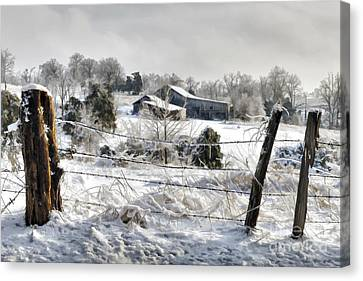 Ice Storm - D004825a Canvas Print by Daniel Dempster