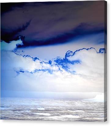 Ice Storm Canvas Print by Sharon Lisa Clarke