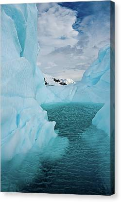 Iceberg Lagoon Canvas Print by Duane Miller