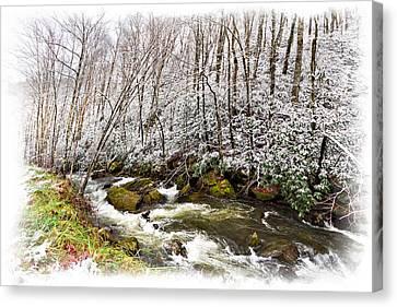 Icy Landscape Canvas Print by Debra and Dave Vanderlaan