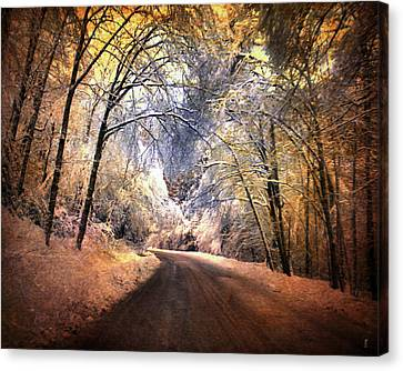 Icy Road Canvas Print by Jai Johnson