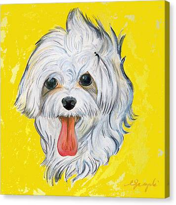 Icy The Maltese Canvas Print by Ann Marie Napoli