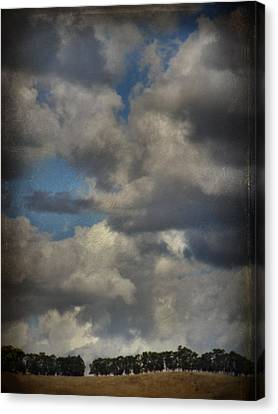 If The World Ends Today Canvas Print by Laurie Search