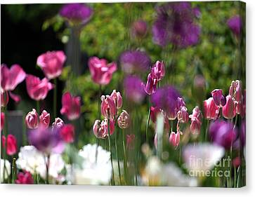 iIn the Garden Canvas Print by Billie-Jo Miller