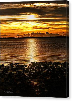 Illuminated Canvas Print by Christopher Holmes