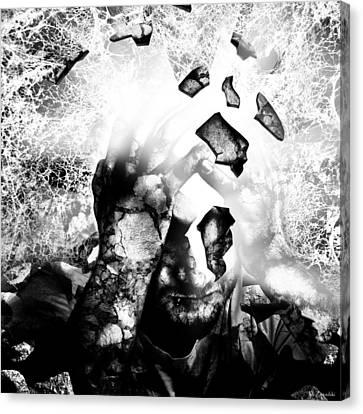Illuminator II Canvas Print