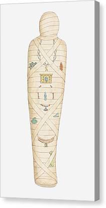Illustration Of Egyptian Mummy Canvas Print