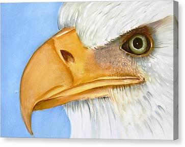Image 1147b Bold Eagle 1 Canvas Print by Wilma Manhardt