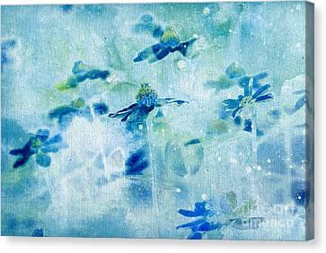 Imagine - M11v09 Canvas Print