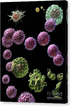 Canvas Print featuring the digital art Immune Response Cytotoxic 2 by Russell Kightley