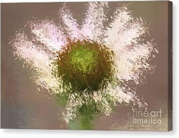 Impressionistic Echinacea Canvas Print by Deborah Benoit