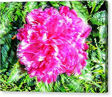 Impressionistic  Peony Canvas Print by Barbara Griffin