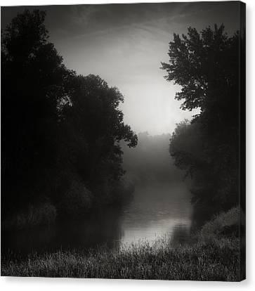 In Floodplain Forest Canvas Print by Jaromir Hron