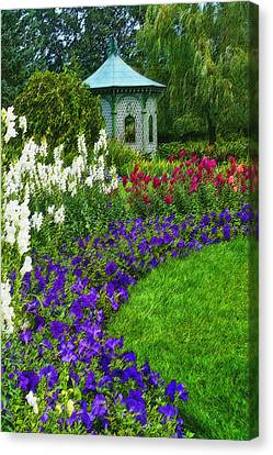 Canvas Print featuring the photograph In Full Bloom by Cindy Haggerty