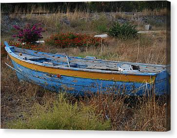 Canvas Print featuring the photograph In Need Of Repairs by Caroline Stella