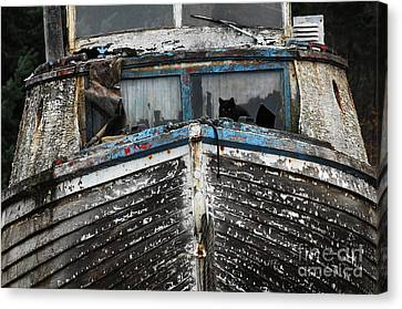 In Need Of Work Canvas Print by Bob Christopher