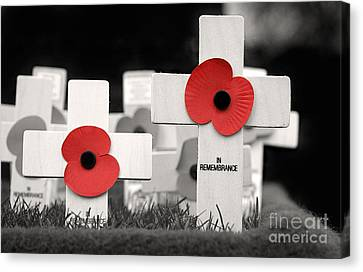In Remembrance Canvas Print by Jane Rix